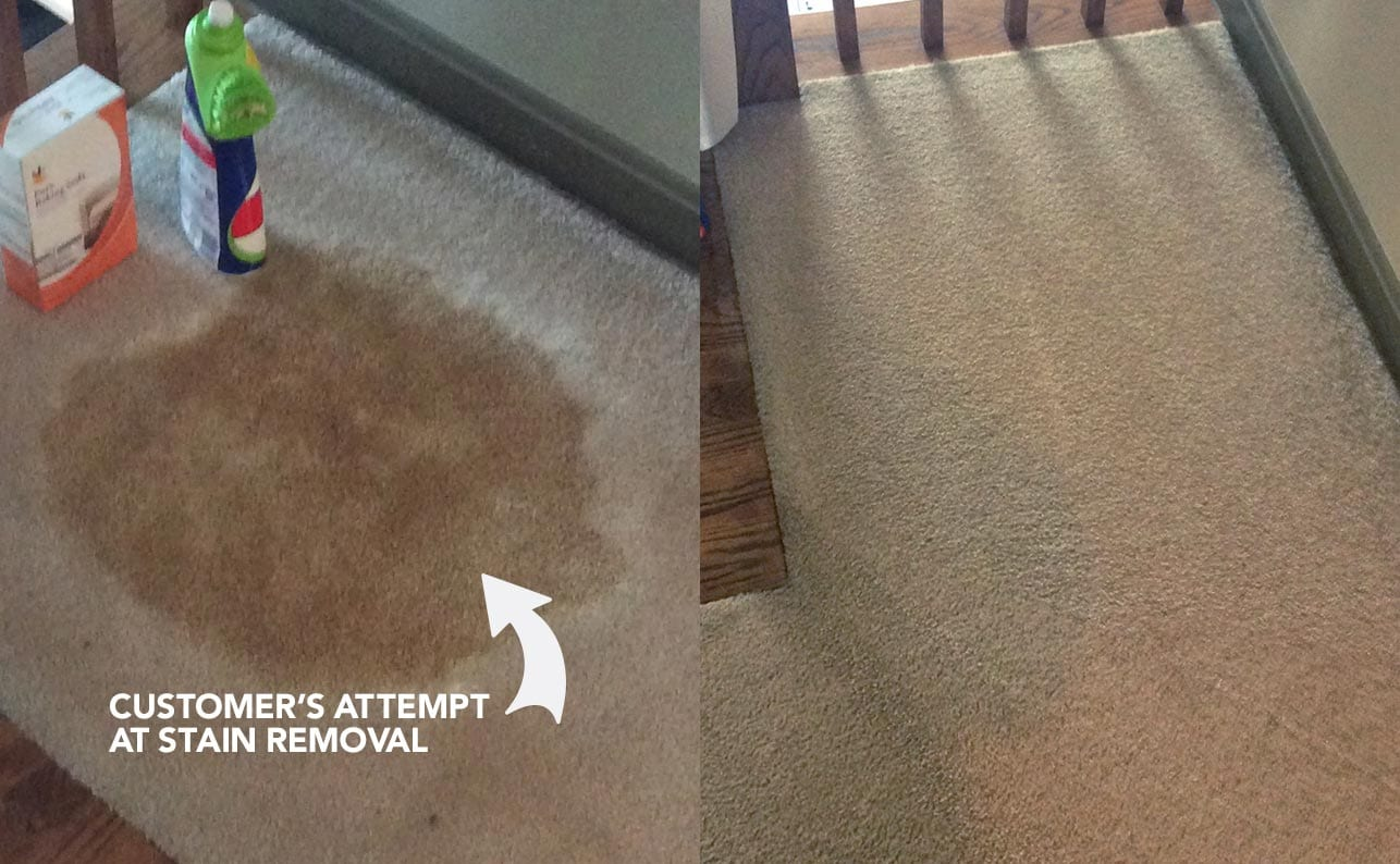 Carpet Cleaning Area Rug Cleaning Before And After Photos