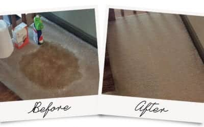 DIY Carpet Cleaning Gone Wrong
