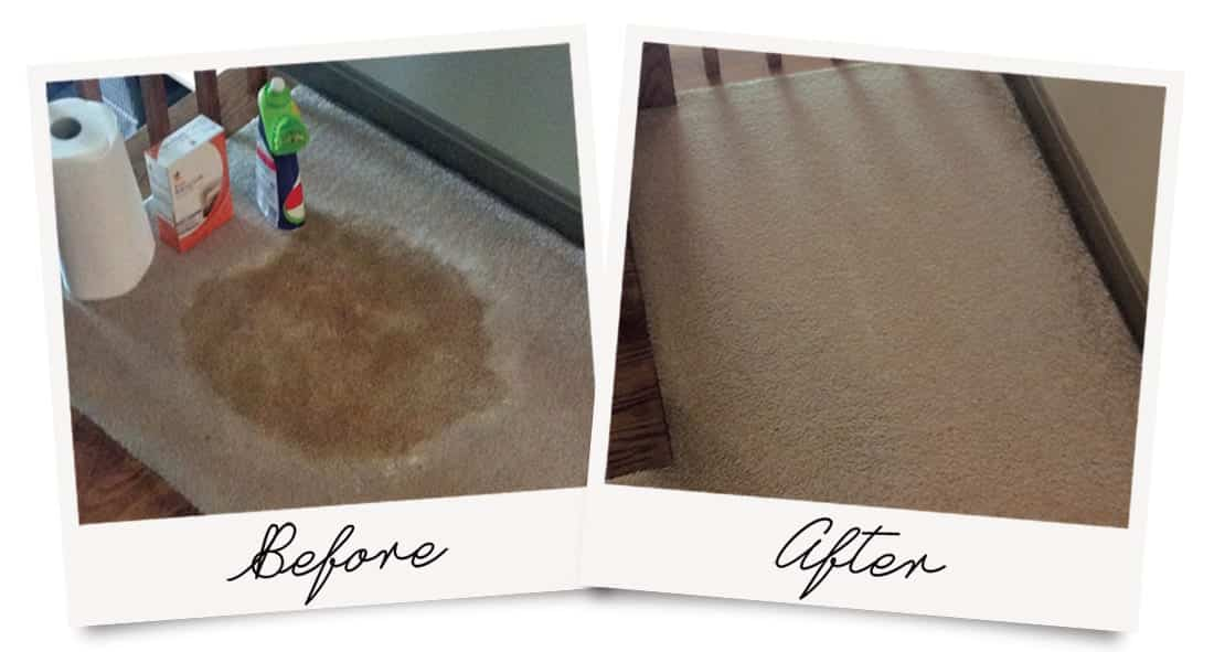 DIY Carpet Cleaning Disaster Before and After Photo, with restored condition.
