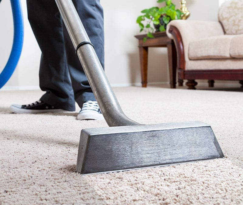 What is the Best Season to Have Your Carpets Cleaned?