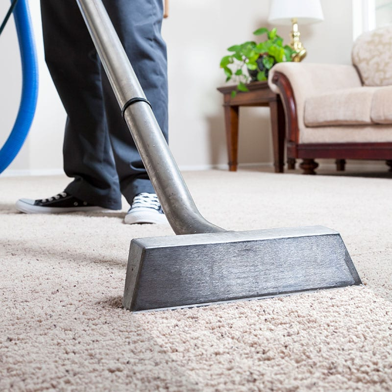 Carpet Cleaning using Hot Water Extraction Method.
