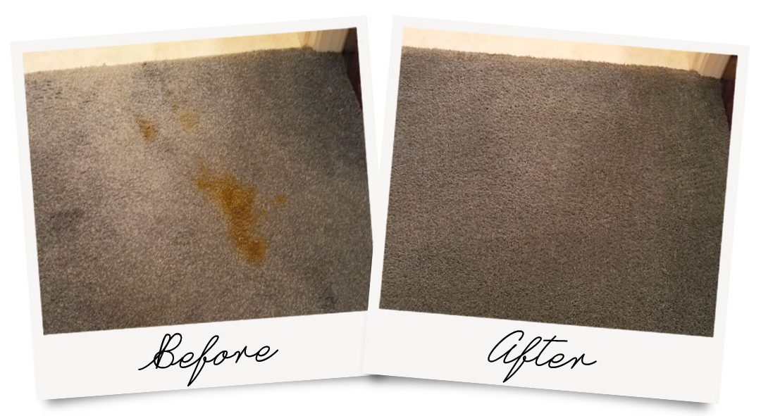 Before and After photo showing stain removal from carpet