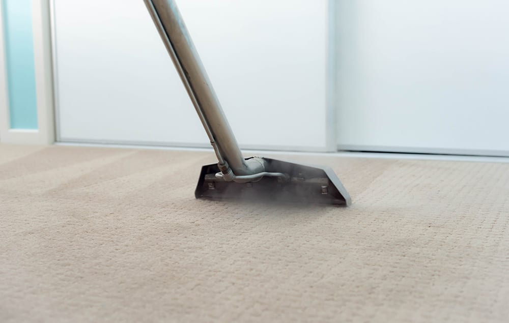 Carpet Steam Cleaning, removing stains & soils from a carpet